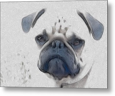 Vito Metal Print by Cindy Luelling