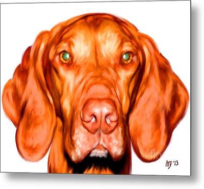Vizsla Dog Art Portrait Metal Print by Iain McDonald
