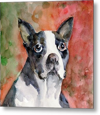 Vodka - French Bulldog Metal Print by Faruk Koksal