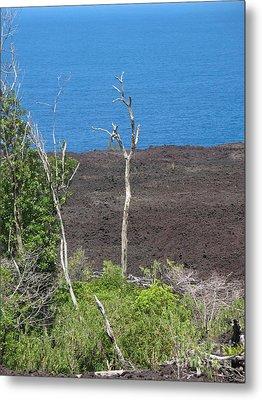Volcano Rocks - Ile De La Reunion - Reunion Island Metal Print by Francoise Leandre