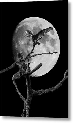 Vulture Moon Metal Print