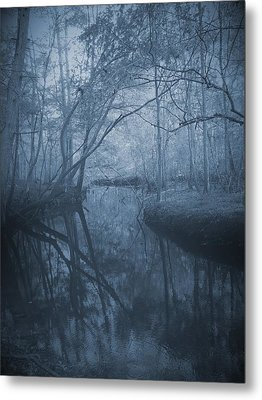 Waccasassa River Metal Print by Phil Penne