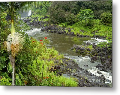 Wailuka River Metal Print by Bob Phillips