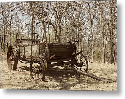 Metal Print featuring the photograph Waiting For A Horse by Kathleen Scanlan