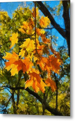 Waiting For Fall Metal Print by Michael Flood