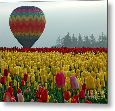 Metal Print featuring the photograph Waiting For Lift Off by Nick  Boren