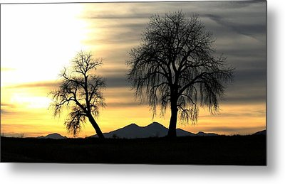 Waiting For Snow Metal Print by Rebecca Adams