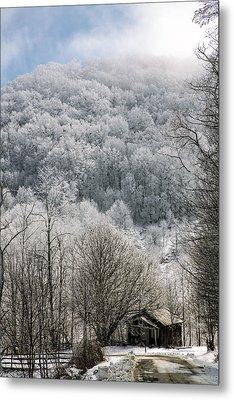 Waiting Out Winter Metal Print by John Haldane