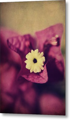 Waking Up Happy Metal Print by Laurie Search
