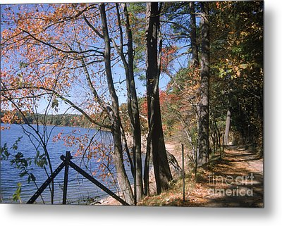 Walden Pond Metal Print by Eunice Harris