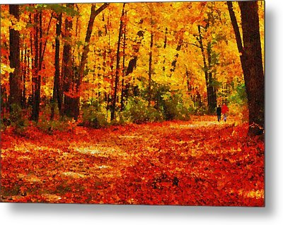 Walk In An Autumn Park Metal Print