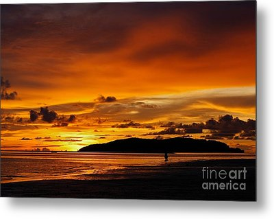 Walk In Paradise  Metal Print by Gary Bridger