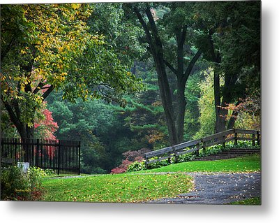 Walk In The Park Metal Print by Christina Rollo