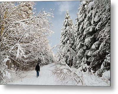 Walk In The Winterly Forest With Lots Of Snow Metal Print by Matthias Hauser