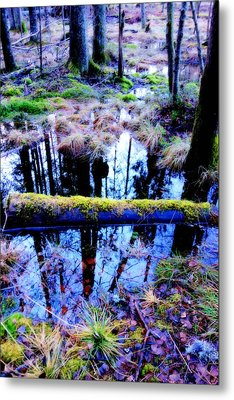 Walk Right Into The Nature's Fairytale With Me  Metal Print
