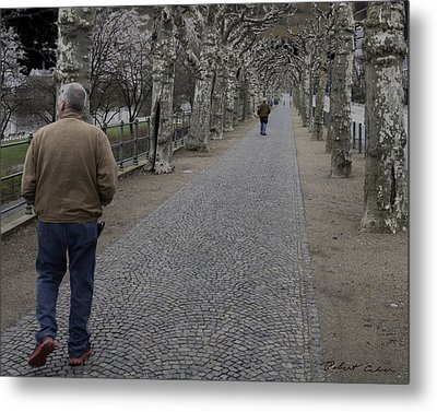 Metal Print featuring the photograph Walk Under The Trees IIi by Robert Culver