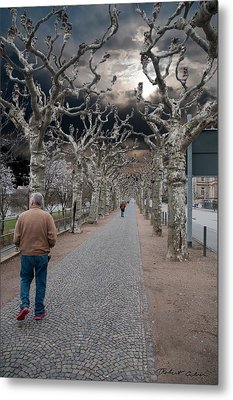 Metal Print featuring the photograph Walk Under The Trees Iv by Robert Culver