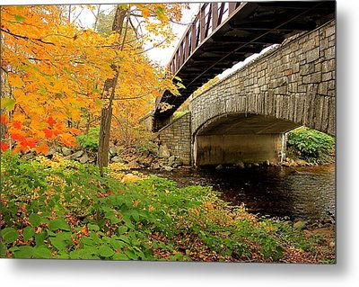 Metal Print featuring the photograph Walking Bridge In Fall by Amazing Jules