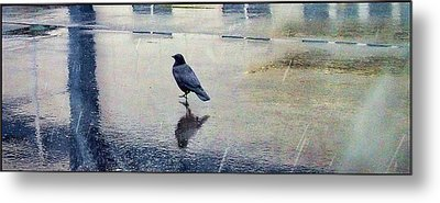 Walking In The Rain Metal Print