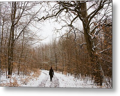Walking In The Winterly Woodland Metal Print by Matthias Hauser