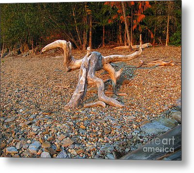Walking On The Beach Metal Print by Leone Lund