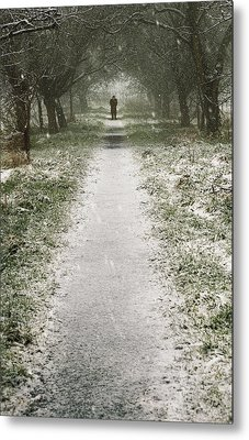 Walking On The Winter Path Metal Print by Svetlana Sewell