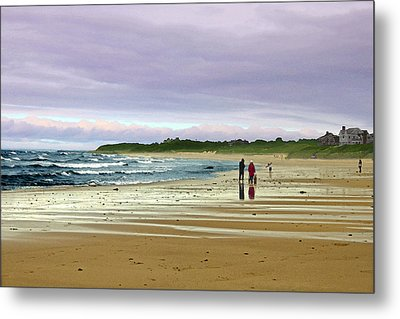 Walking The Dog After A Storm Metal Print by William Sargent