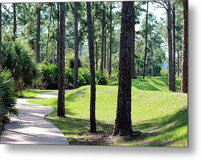 Walkway At The Gardens Metal Print by Nance Larson