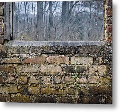 Wall And Window Metal Print by Steve Stanger