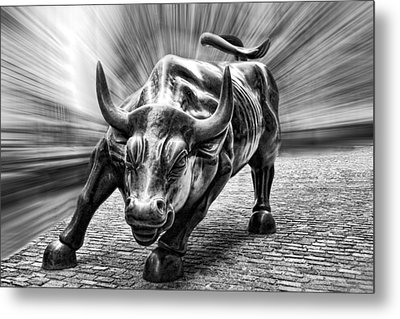 Wall Street Bull Black And White Metal Print by Wes and Dotty Weber
