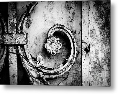 Wallflower Metal Print by Dean Harte