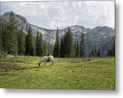 Wallowas - No. 2 Metal Print