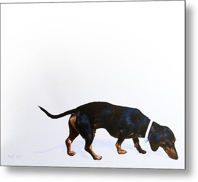 Walter Metal Print by Kevin Hill