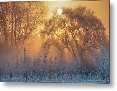 Warm And Cold Metal Print