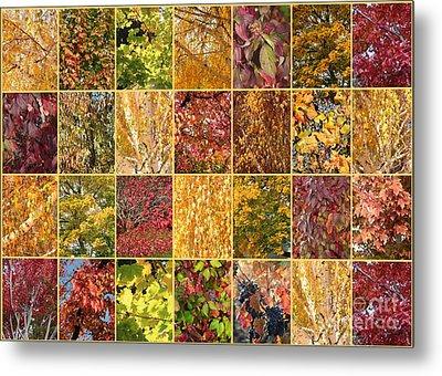 Warm Autumn Quilt Collage Metal Print by Carol Groenen