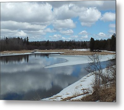 Metal Print featuring the photograph Warming Days by Gene Cyr
