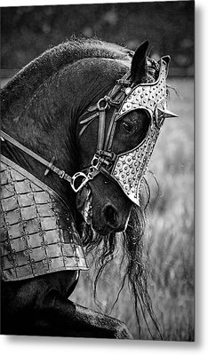 Warrior Horse Metal Print by Wes and Dotty Weber