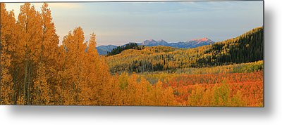 Wasatch Gold Metal Print