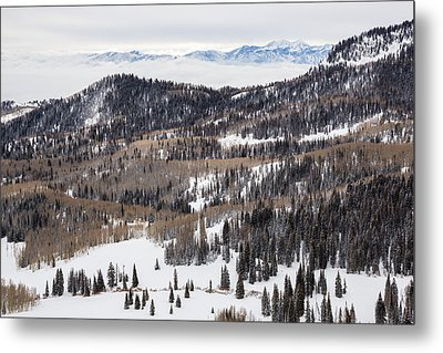Wasatch Winter Metal Print by Adam Pender