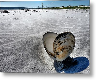 Metal Print featuring the photograph Washed Ashore by Janice Drew