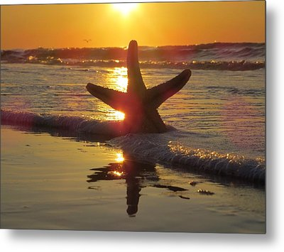 Metal Print featuring the photograph Washed Ashore by Nikki McInnes
