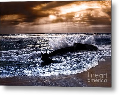 Washed Out To Sea - Outer Banks Metal Print by Dan Carmichael