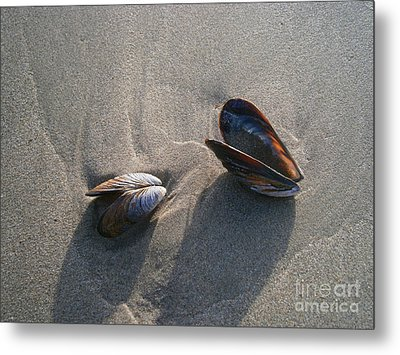 Washed Up Metal Print by Drew Shourd