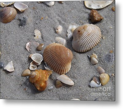 Washed Up On The Beach Metal Print
