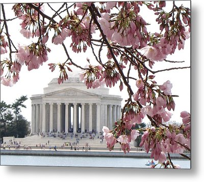 Washington Dc In Bloom Metal Print by Jennifer Wheatley Wolf