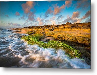 Washington Oaks State Park Coquina Rocks Beach St. Augustine Fl Beaches Metal Print by Dave Allen