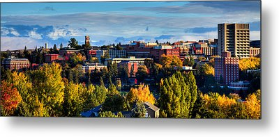 Washington State University In Autumn Metal Print