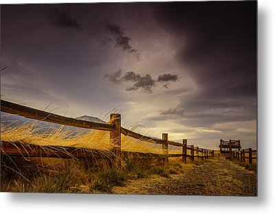 Washoe Lake Wildlife Area Metal Print by Janis Knight