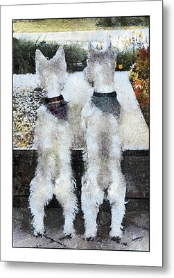 Watching And Waiting 2 Metal Print by Geraldine Alexander