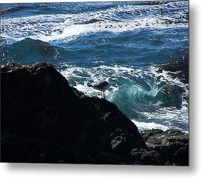 Metal Print featuring the photograph Watching As The Waves Pass By by Christine Drake